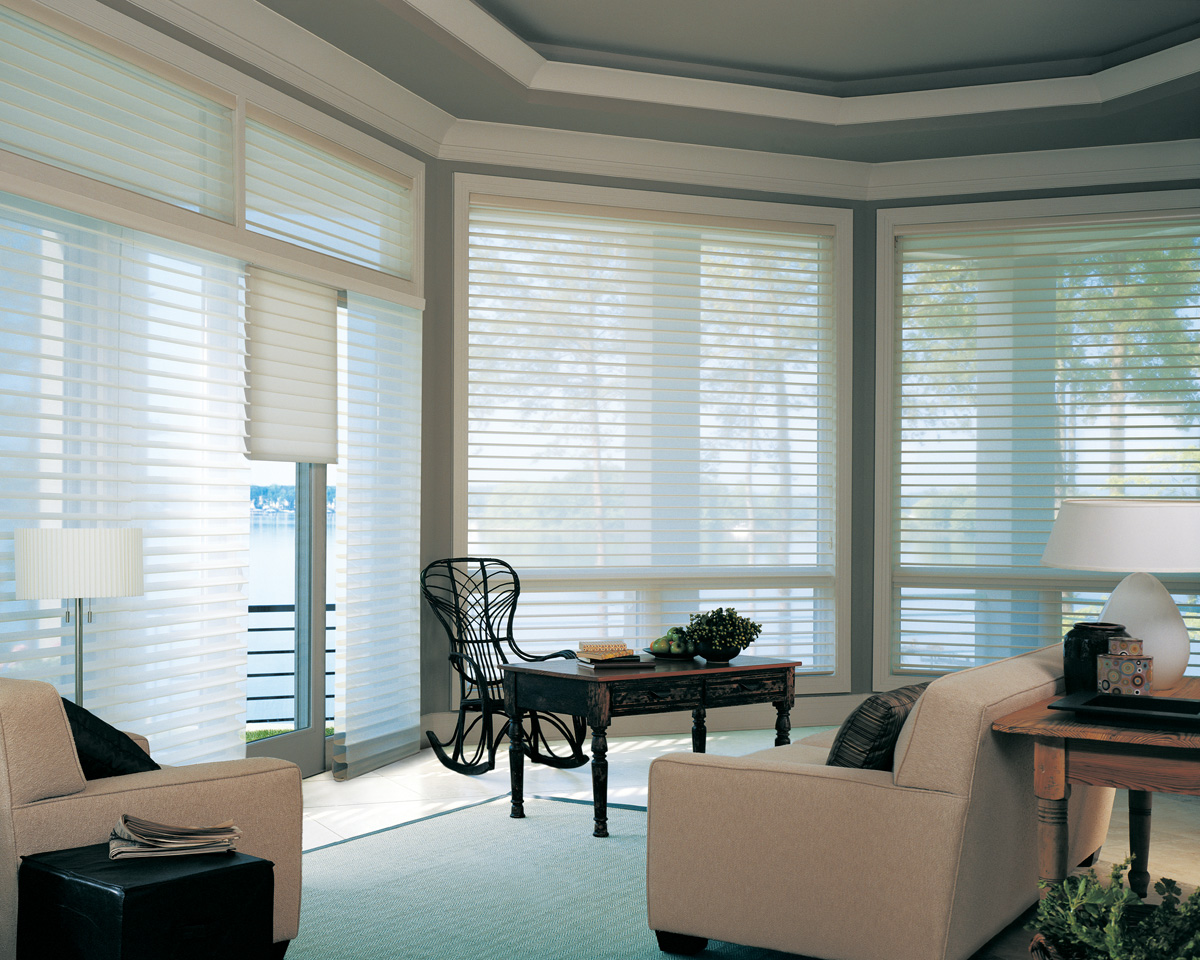 Patio door options window coverings ideas chicago for Window coverings
