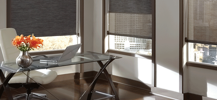 Ideal Window Coverings In Downtown Chicago Skyline