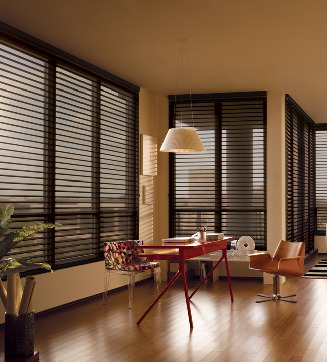 Living Room Large Windows Sheer Shades Hunter Douglas Chicago 60611 Nantucket Window Shadings