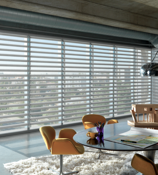 Hunter Douglas Pirouette Window Shades