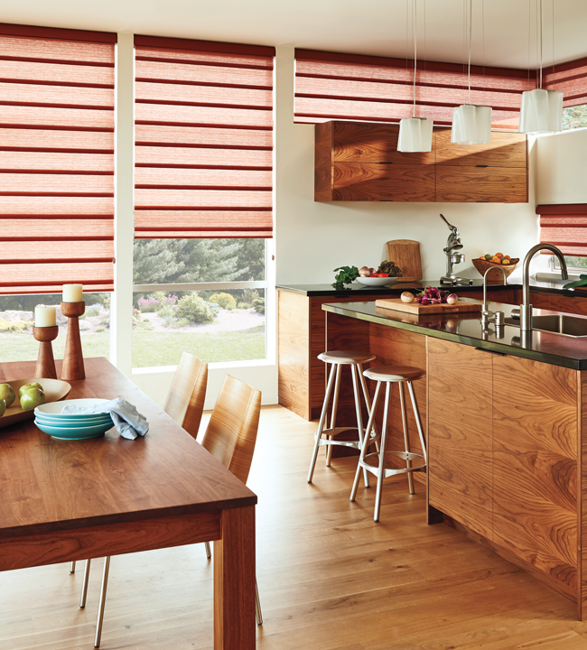 Hunter Douglas Vignette Modern Roman Shades kitchen Chicago 60657