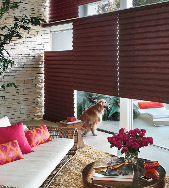 Hunter Douglas Roman Shades Chicago 60610