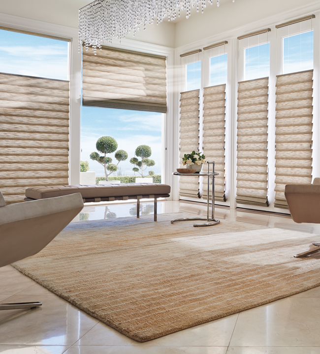 Hunter douglas roman shades chicago 60657