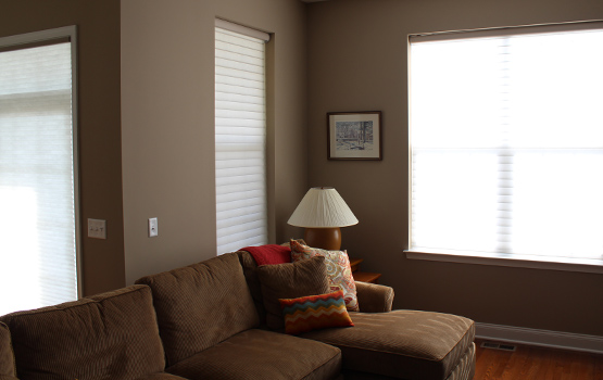 Naperville home with light filtering window shades