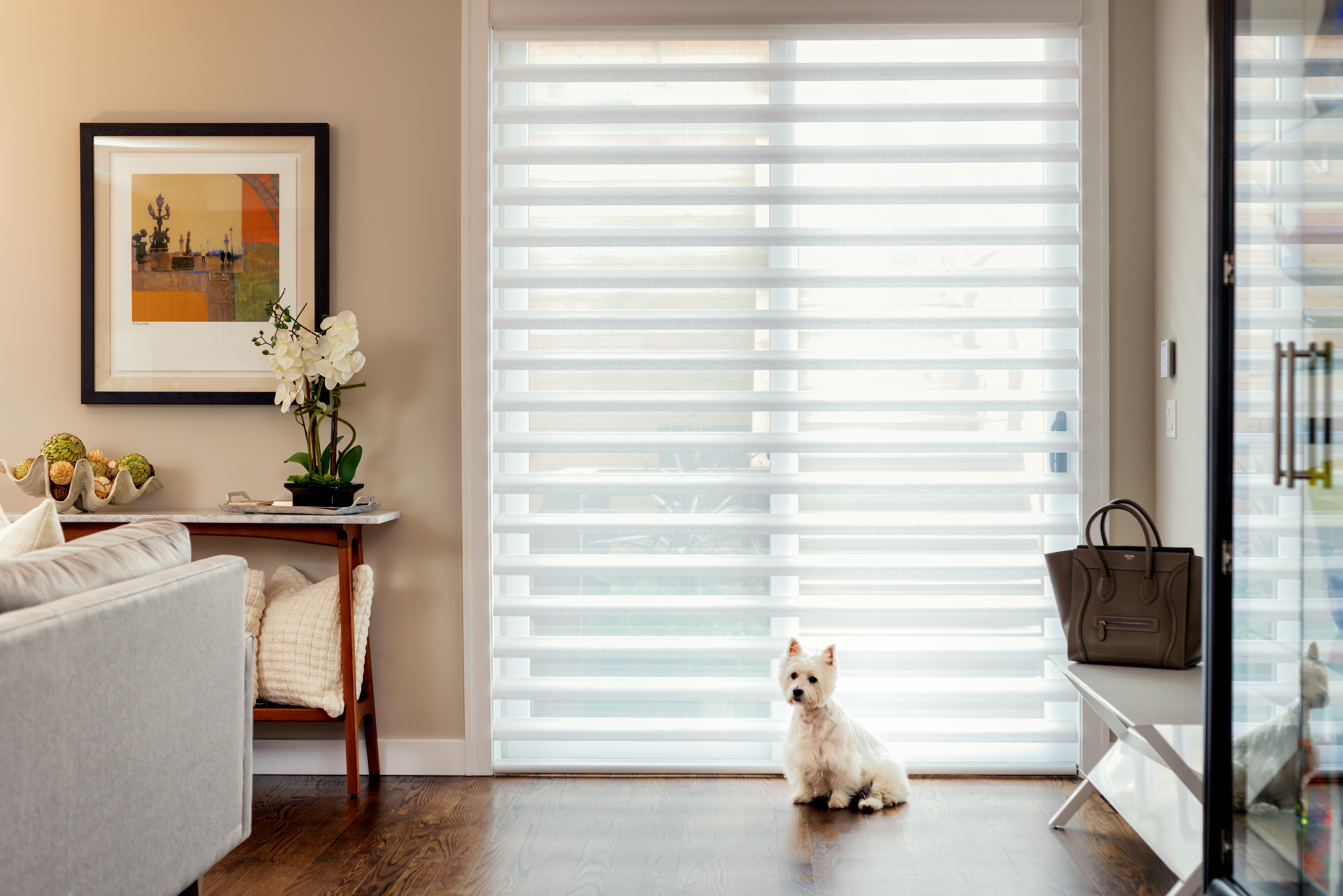 in douglas and catalog shades pirouette amazing stdcordlock sheer chalet alustra blinds previous order toronto hunter living