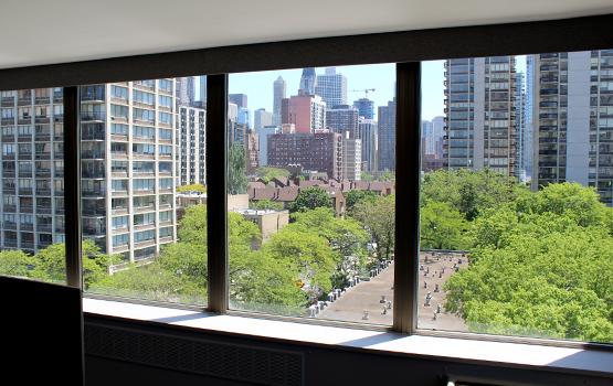 bare windows in Chicago IL condo