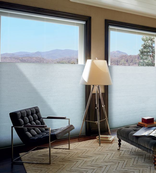 Floor To Ceiling Blinds Shades Hunter Douglas Large
