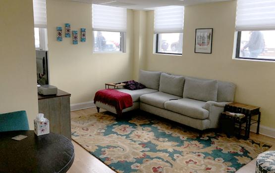 living room vignette modern roman shades Hunter Douglas Chicago 60657