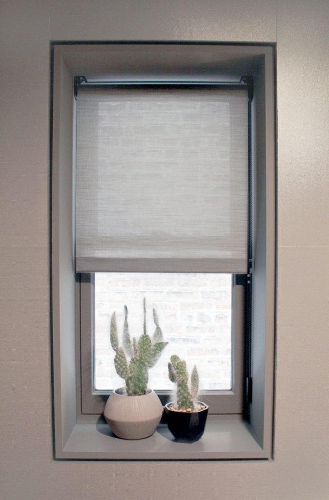 cactus in window with gray screen shades in Chicago IL