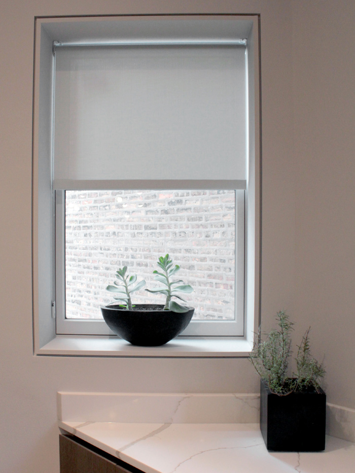 plant in window with screen shades in Chicago IL