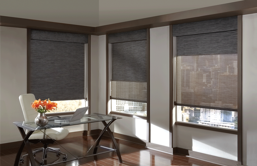 Black dual roller shades in home office