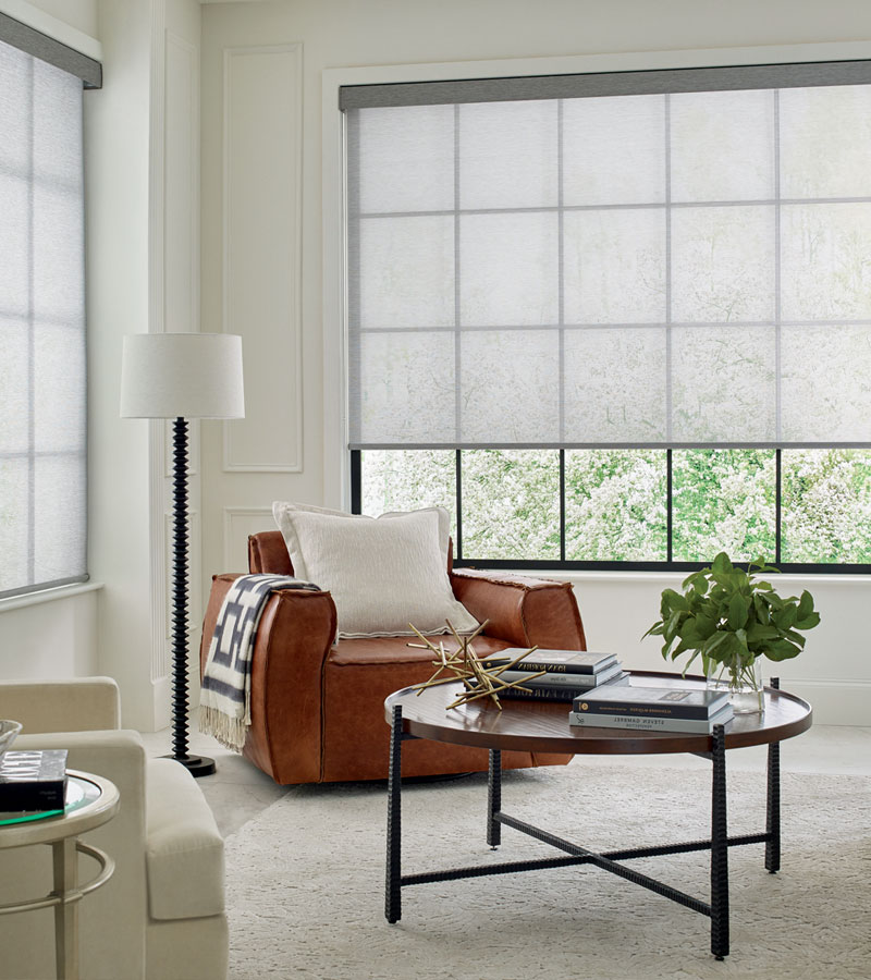 screen shades roller shades in living room in Chicago IL