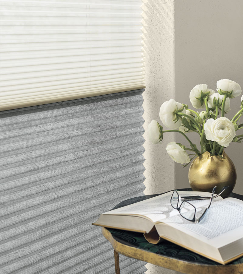applause honeycomb shades with dual shades two on one Chicago 60614