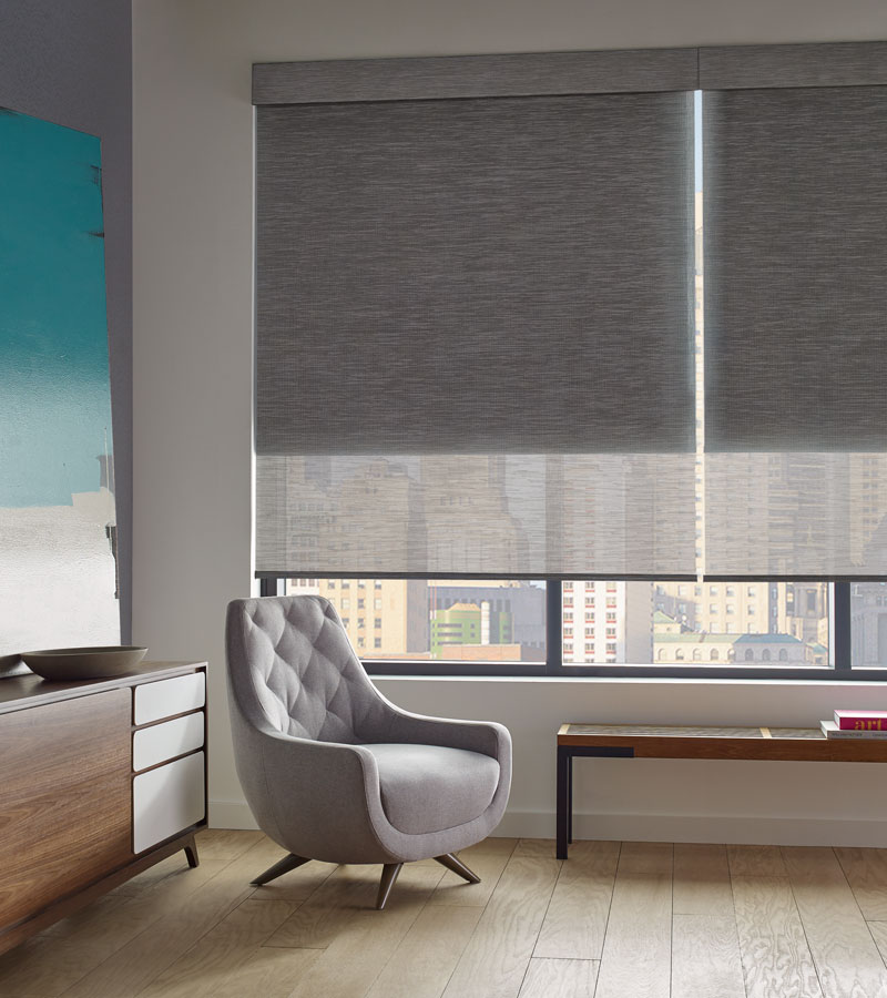 Chicago condo with gray roller screen shades with dual shades on one window