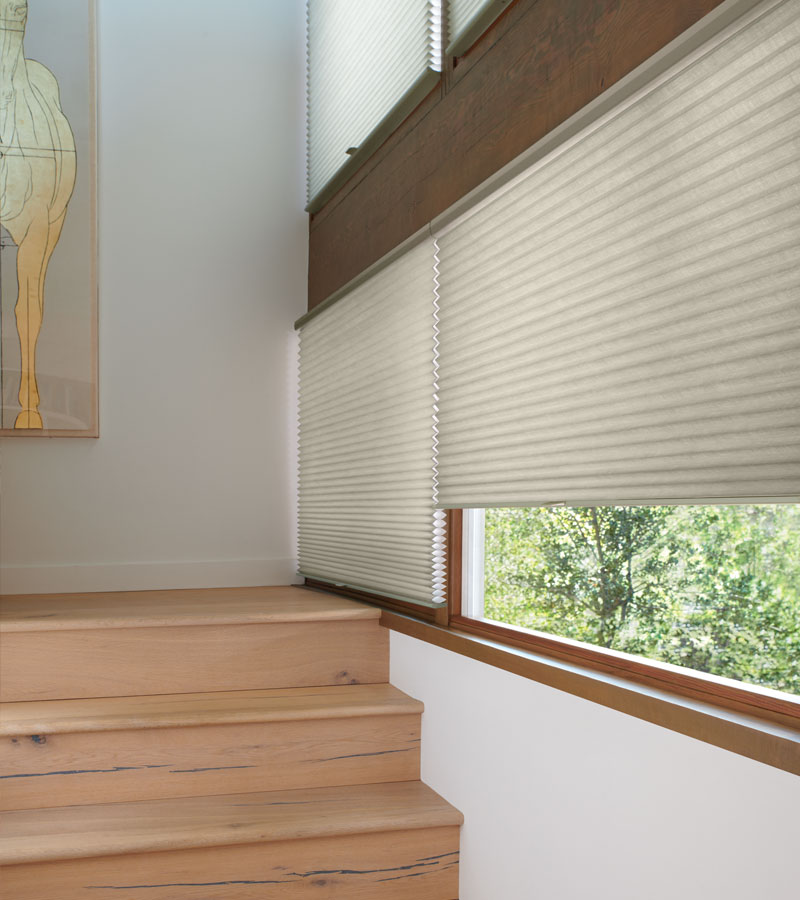 duette honeycomb cordless shades in Portland OR home