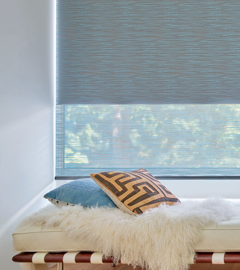 gray duolite roller shades front light filtering with back shade in blackout Chicago 60611