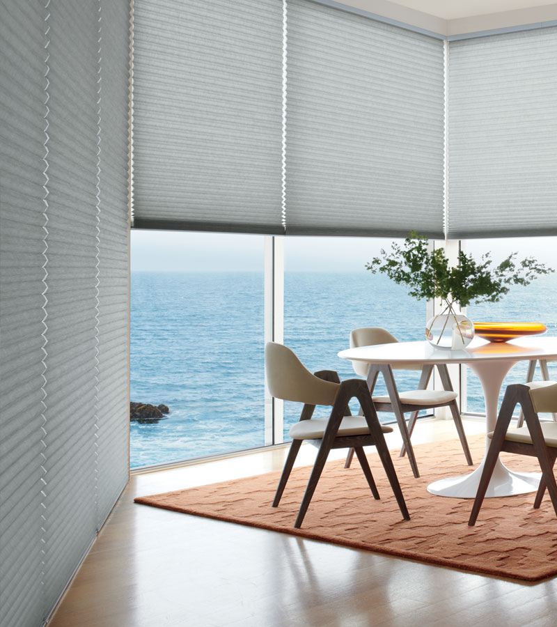 honeycomb cellular blinds for large windows in Chicago IL