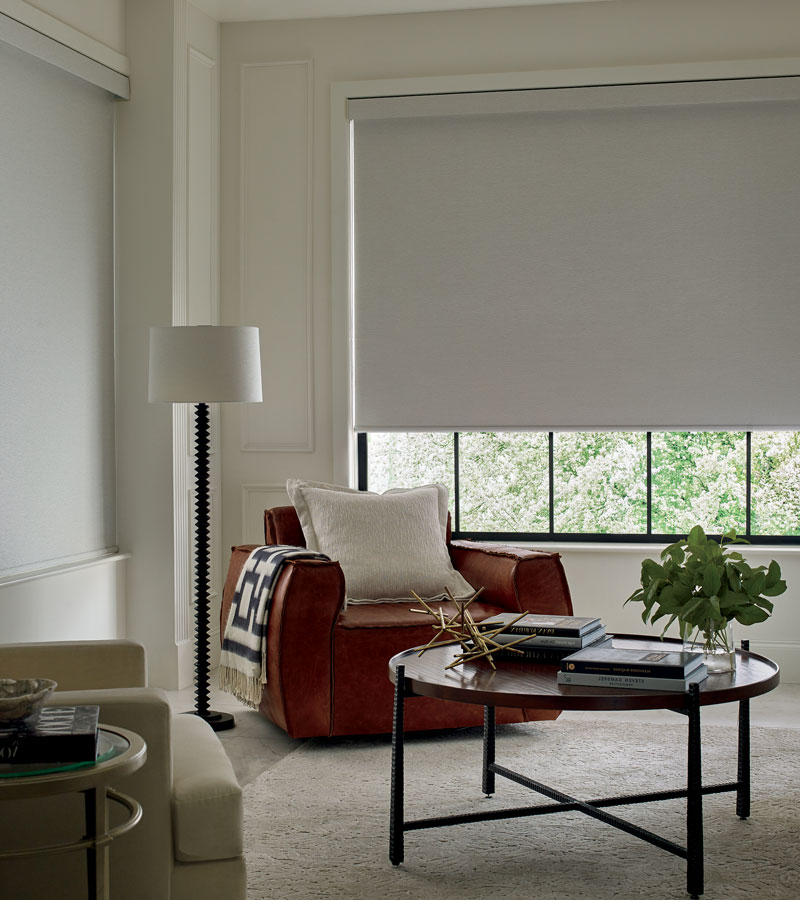room darkening roller blinds in Naperville IL living room