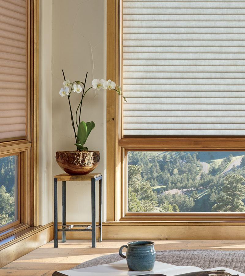 beige window shades for energy efficiency in Portland OR