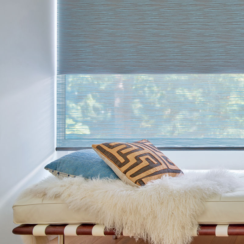 dual roller shades in Chicago IL home