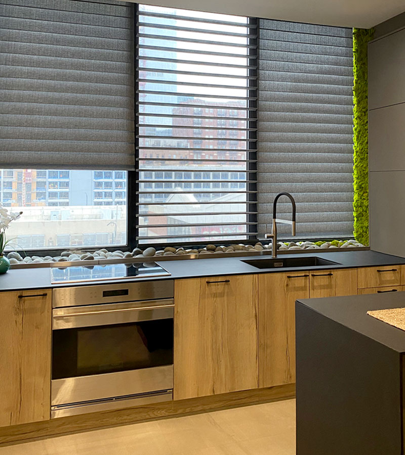 window shades in kitchen with moss wall feature Chicago 60611