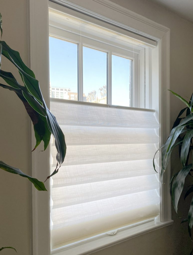 cordless roman shades with top down bottom up in Vancouver WA