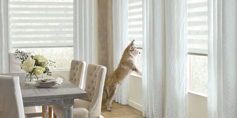Pet friendly window coverings Chicago, IL